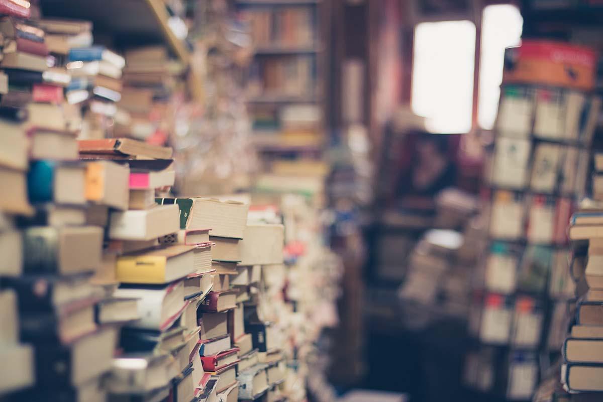 english and literature books